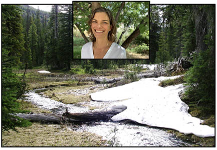 Sara Goeking: Linkages between forests, snowpack, and streamflow in western coniferous forests