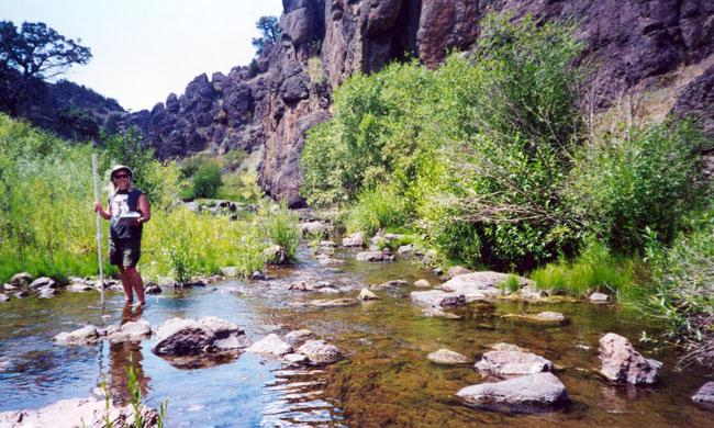 North Fork Owyhee River