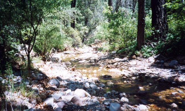 South Fork Cave Creek